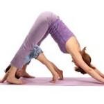 Familian  egindako  yoga  saioaren  irratsaioa