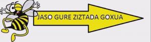 JASO GURE ZIZTADA GOXUA